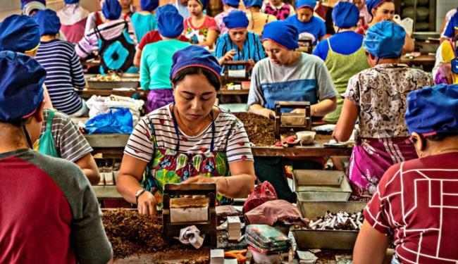 Bebani Buruh, Serikat Pekerja RTMM Minta Cukai SKT Tak Naik