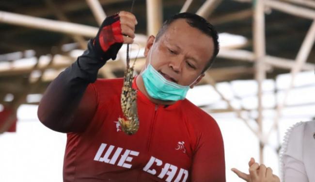Diciduk KPK, Harta Kekayaan Menteri Kelautan Edhy Prabowo Capai Rp7,4 M!